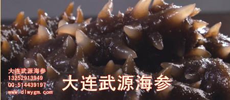 这样食用海参不仅可以经过胃的消化和吸收,而且通过小肠蠕动可以二次