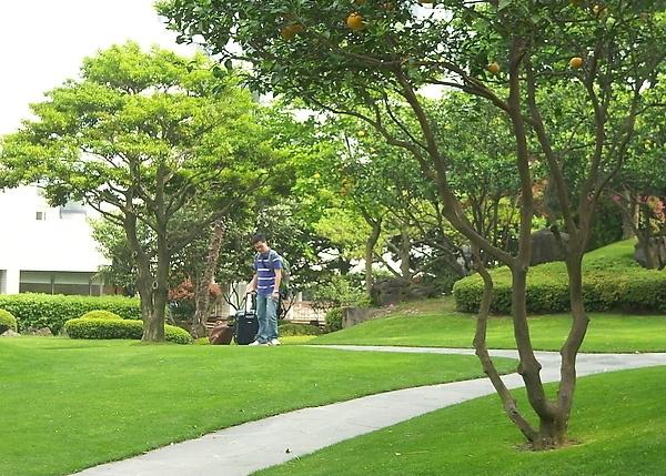 上海诱鱼实业有限公司是一家专业从事园林景观设计和营造的公司,集设计、施工和后期养护于一体的综合性公司 ,公司自成立以来一直专注于客户的需求与产品的创新应用,专业从事高端景观的设计营造,目前主要业务为园林景观设计、规划和施工,包括别墅花园设计,花园施工,屋顶花园、高档会所景观、星级酒店景观、商业办公景观环境设计及小区规划和各类公共绿地景观设计和施工,专为高端人群提供从设计到施工及售后养护一站式服务。 本公司拥有自已专业的设计师团队、擅取百家之长形成自己独特的风格,全体设计人员秉承设计为了实现 的信念,提供