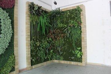 画框式植物墙,植物墙