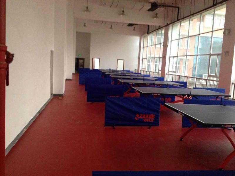 乒乓球案例(室内)