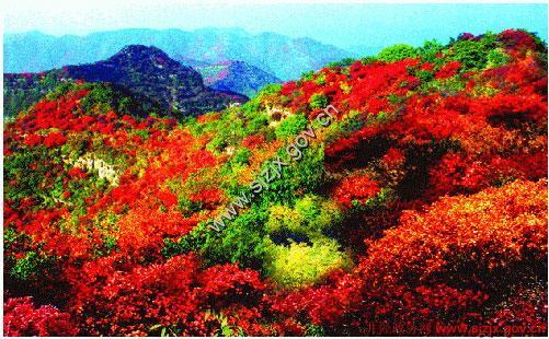 仙台山风景区位于井陉县西北部的交界处
