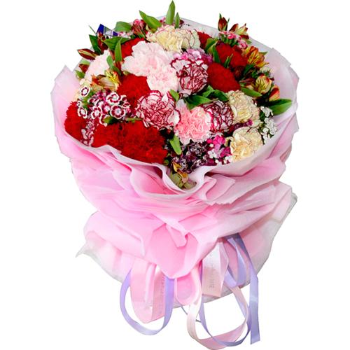 康乃馨花束--缤纷祝福
