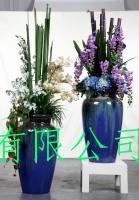 6大类容器插花