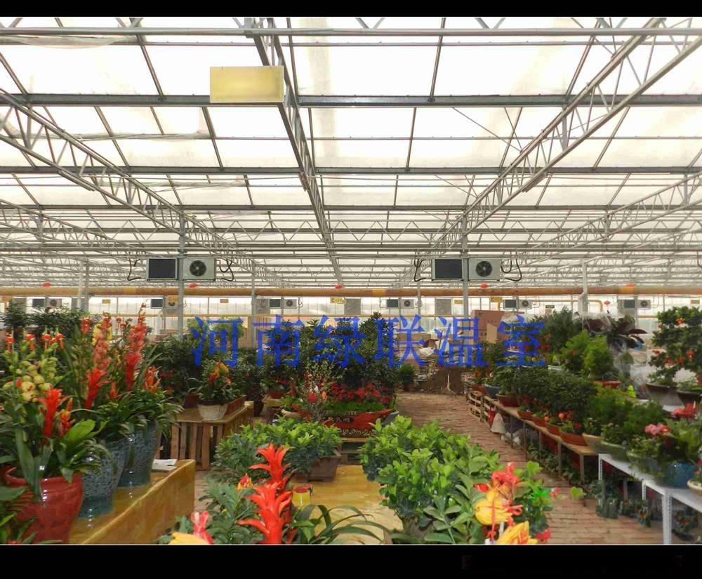 零售温室大棚花卉市场
