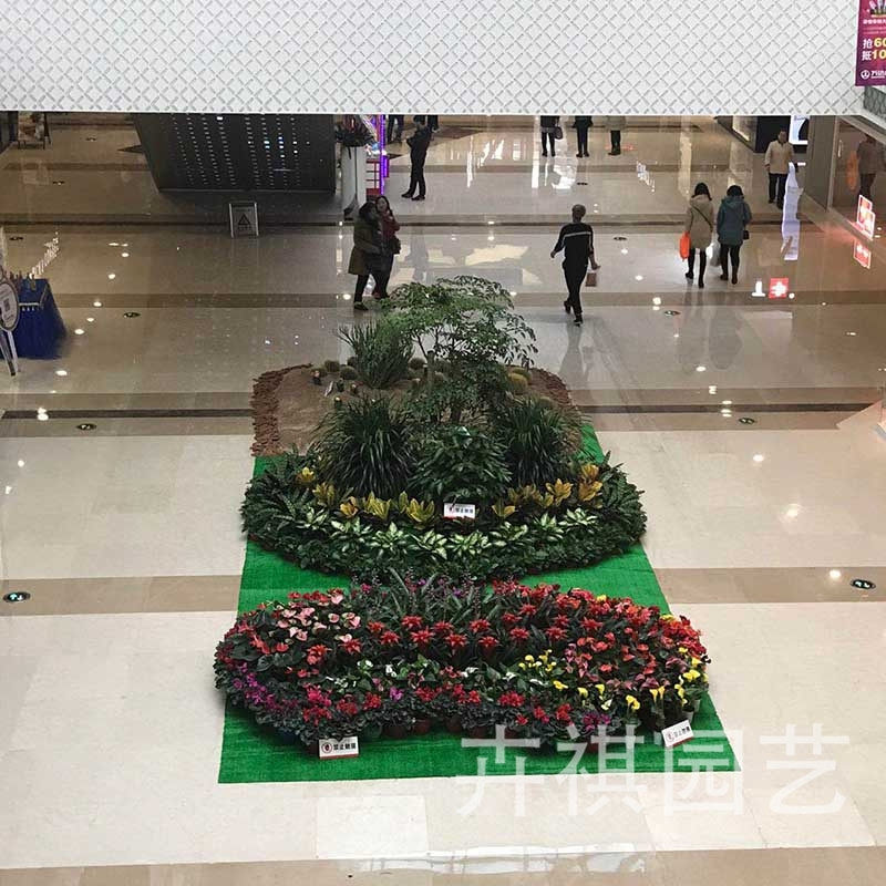 唐山万达广场绿植景观