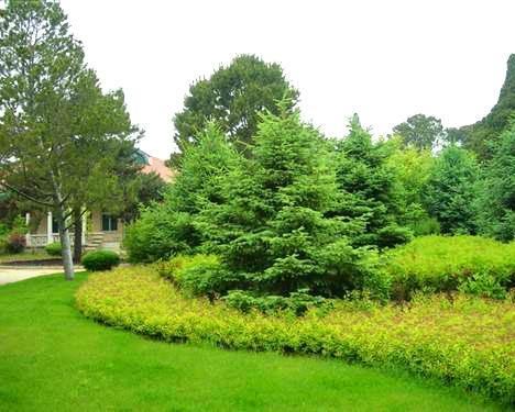 衡水园林公司:公园园林绿化养