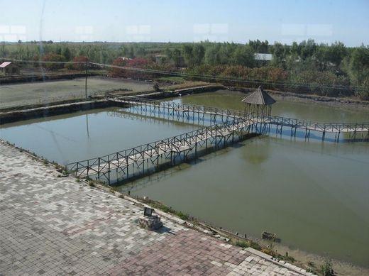 冬至到了,水产养殖户一定要做好防冻工作