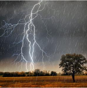 极端天气!埃菲尔铁塔遭雷