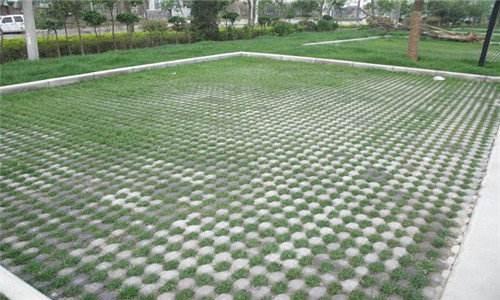 草坪砖案例