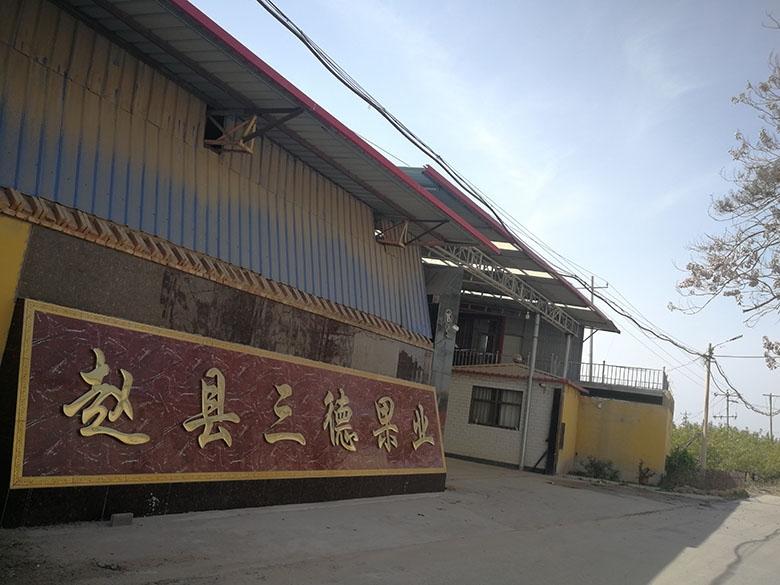 三德果业厂区展示