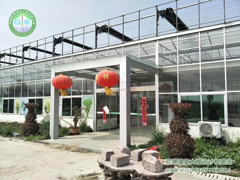 安徽蒙城连栋花卉市场温室