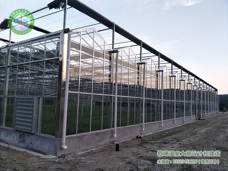 湖南张家界连栋全玻璃温室