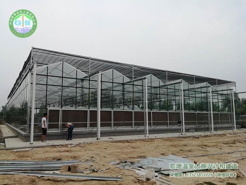 开封园林绿化处连栋PC阳光板(玻璃)温室