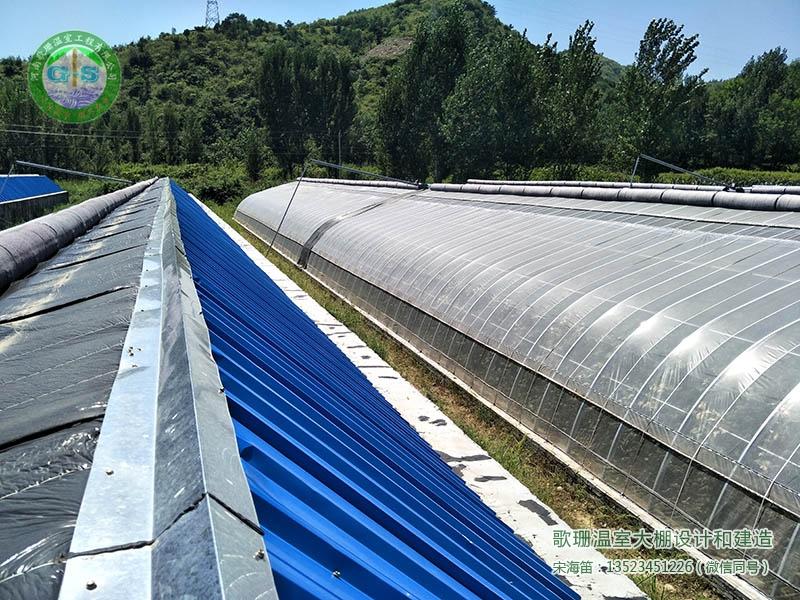 【歌珊温室】郑州新郑市C型钢节能日光温室