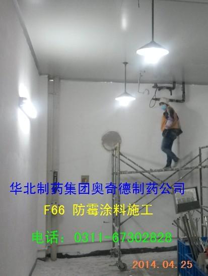 青岛卫生材料厂车间墙面防霉工程