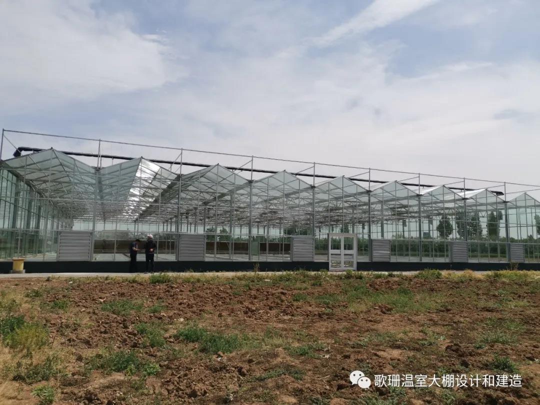 【歌珊温室】焦作市温县农业科学研究所连栋