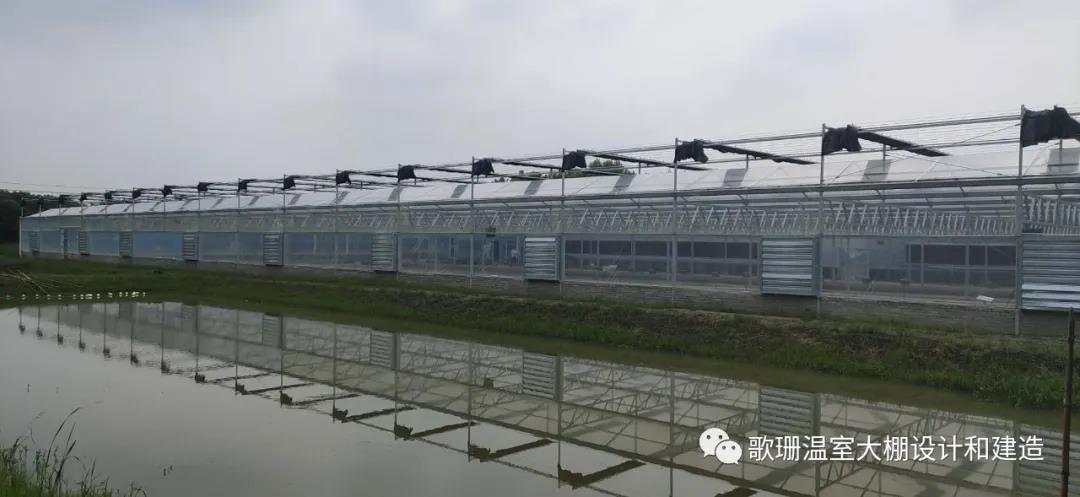 【歌珊温室】安徽芜湖连栋水产养殖温室大棚
