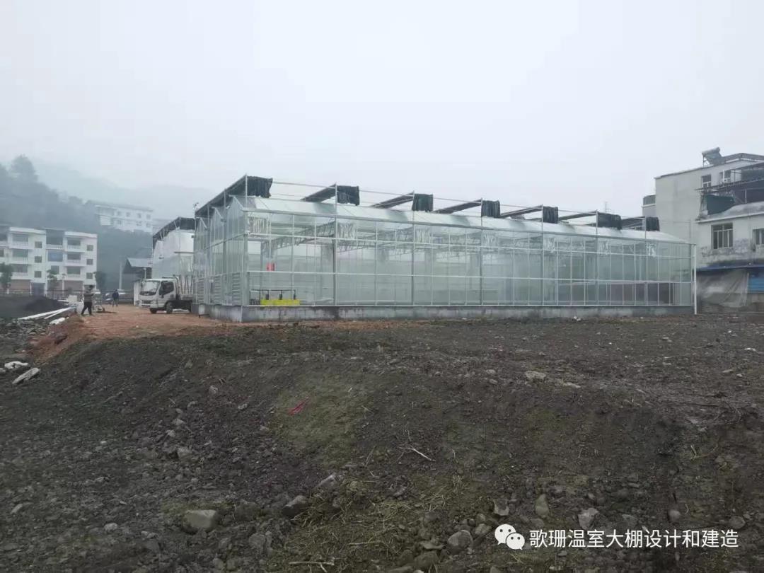 【歌珊温室】湖北建始县职校师生培训基地连