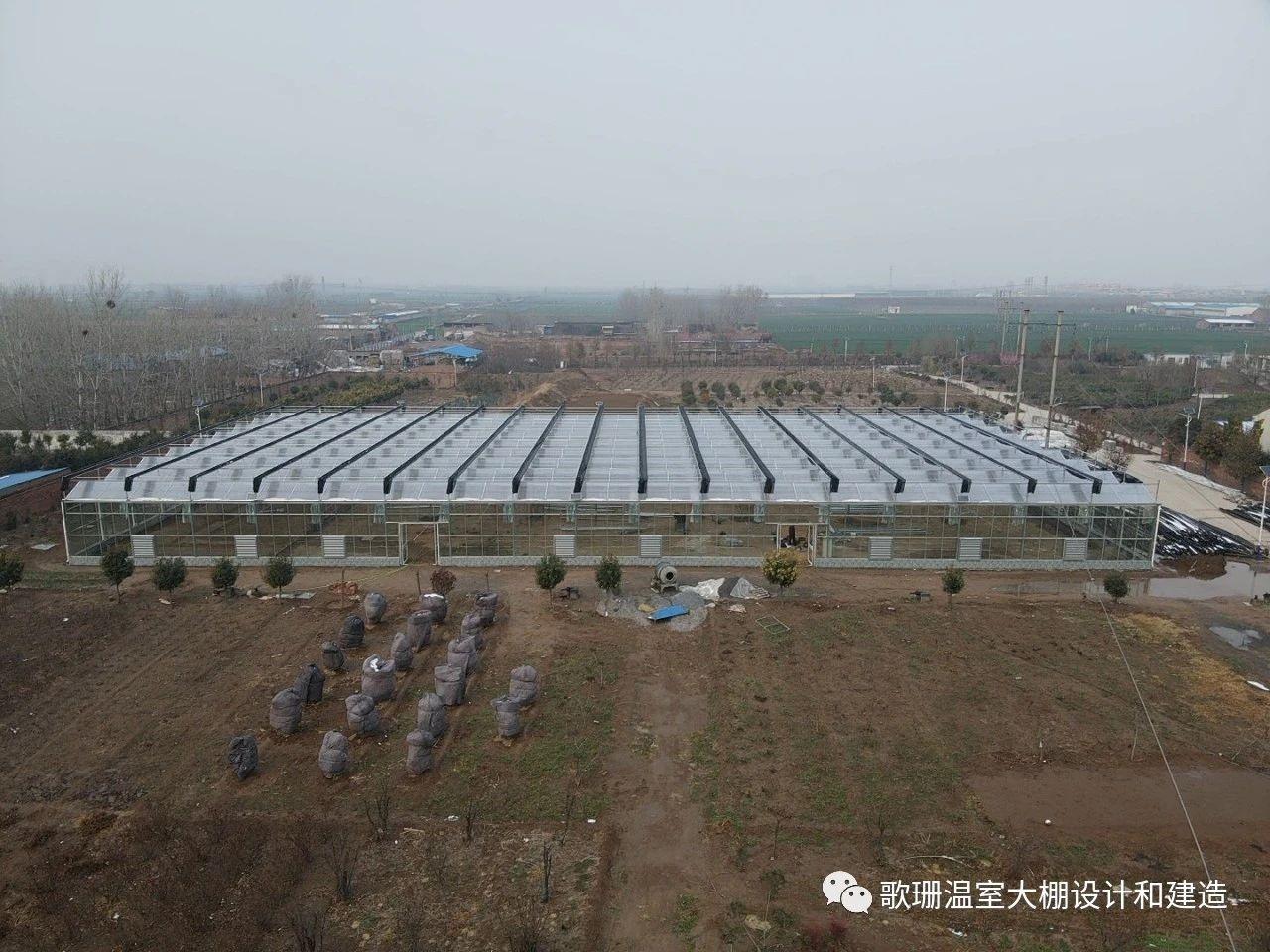【歌珊温室】新乡市获嘉县连栋PC板玻璃温室