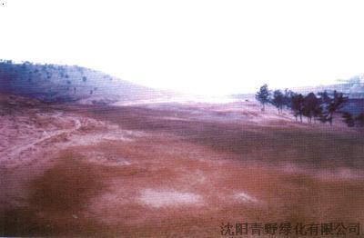 青岛温泉镇天泰高尔夫球场