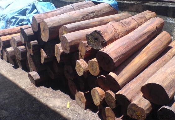名贵木材 图片十大名贵木材图片名贵木材排行榜图片