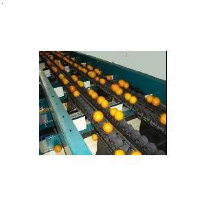 产品首页 机械及行业设备 机械设计 水果清洗分拣机  价      格