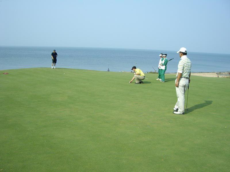 大连长兴岛高尔夫俱乐部