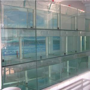 室内玻璃鱼池设计图展示