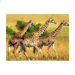 墙面鹿3d立体画 森林 动物