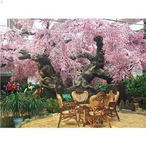 【花树】厂家,价格,图片_沈阳盛世创业园林景观装饰