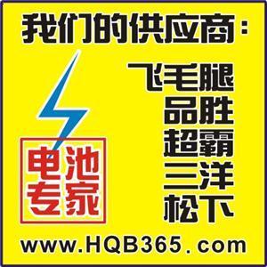 4024 夏新 A208充电器