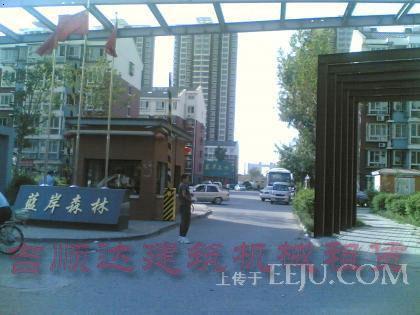 天津塘沽塔吊租赁|天