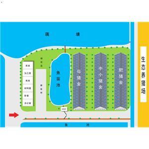 金成水乡生态猪场平面图图片