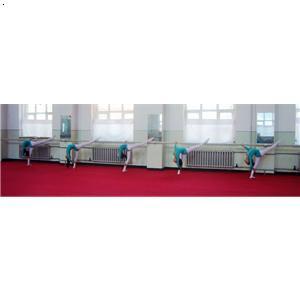哈尔滨红舞鞋舞蹈学校