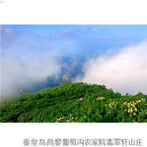 昌黎葡萄沟周边景点-秦皇岛祖山风景区-旅游路线门票