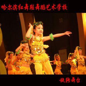 哈尔滨拉丁舞学习