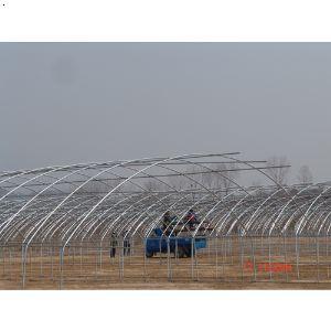 【钢结构大棚】厂家,价格,图片_郑州盛世彩钢有限公司
