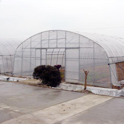 哈尔滨农用棚膜