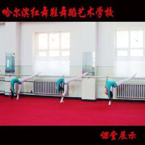 哈尔滨红舞鞋学校