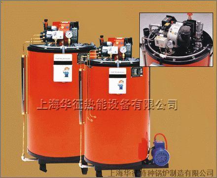 燃油锅炉(洗涤设备配