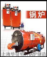 蒸汽锅炉(加热消毒配