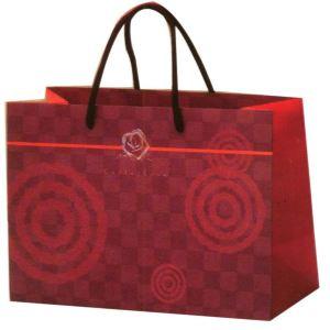 包 包包 包装 包装设计 购物纸袋 挎包手袋 女包 手提包 纸袋 300_300