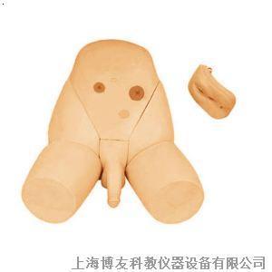 生殖器官 | [組圖+影片] 的最新詳盡資料** (必看!!) - www.go2tutor.com