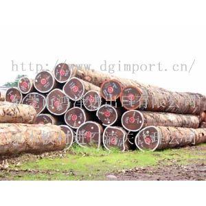 古夷苏木原木进口代理古夷苏木进口流程