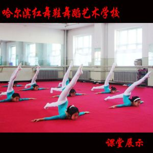 哈尔滨红舞鞋