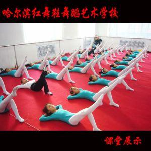 红舞鞋培训学校