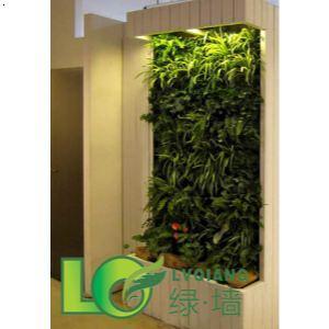 室内家装绿色植物墙