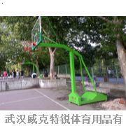 TC-1005移动式单臂篮球架