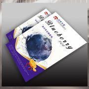 天津制作设计印刷海报 天津海报设计 海报制作 海报印刷 海报批发 公司海报印刷制作 样本设计 宣传册设计 画册设计 企业海报设计印刷 精装海报设计印刷 创意海报设计