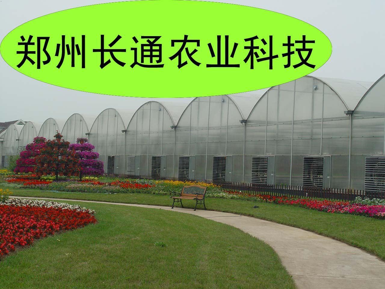 河南阳光板联栋温室